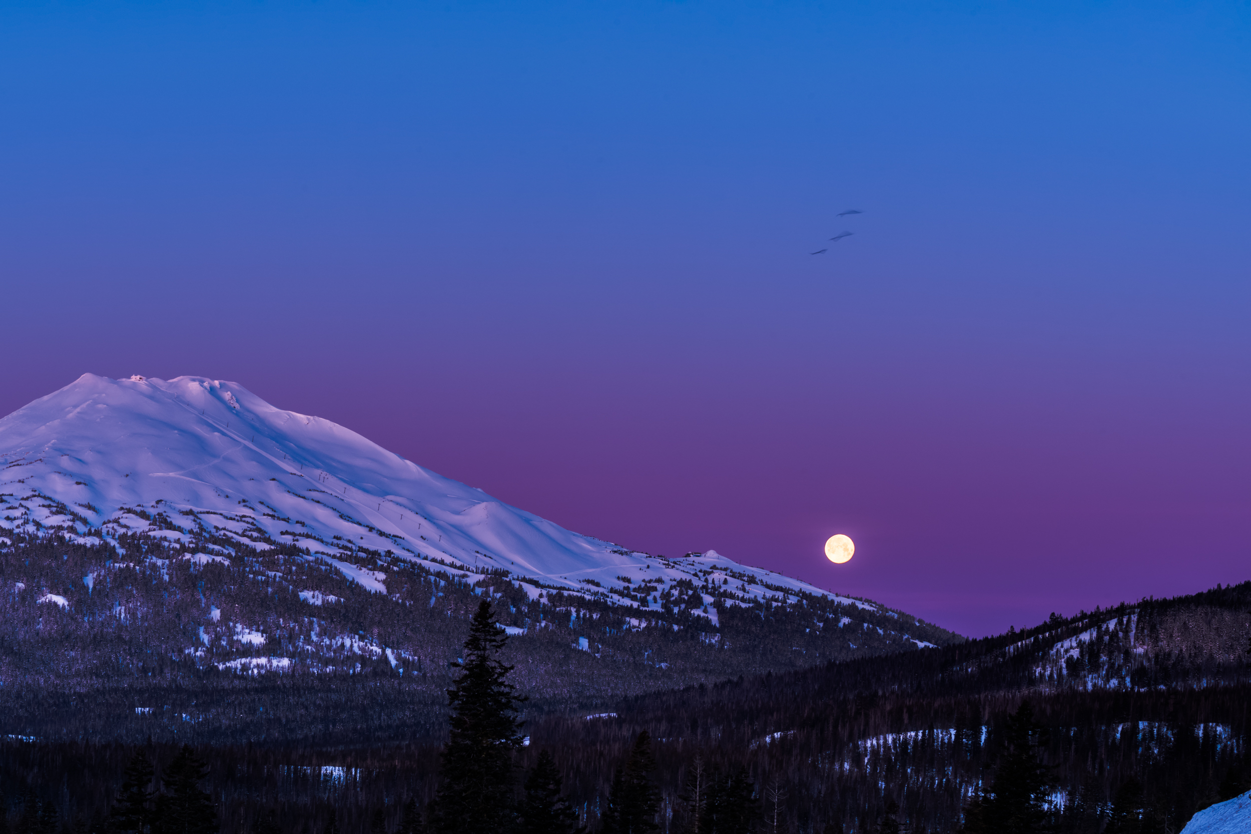 Mt-Bachelor-Moonset-Alpenglow-Steve-Aliberti-3753.jpg
