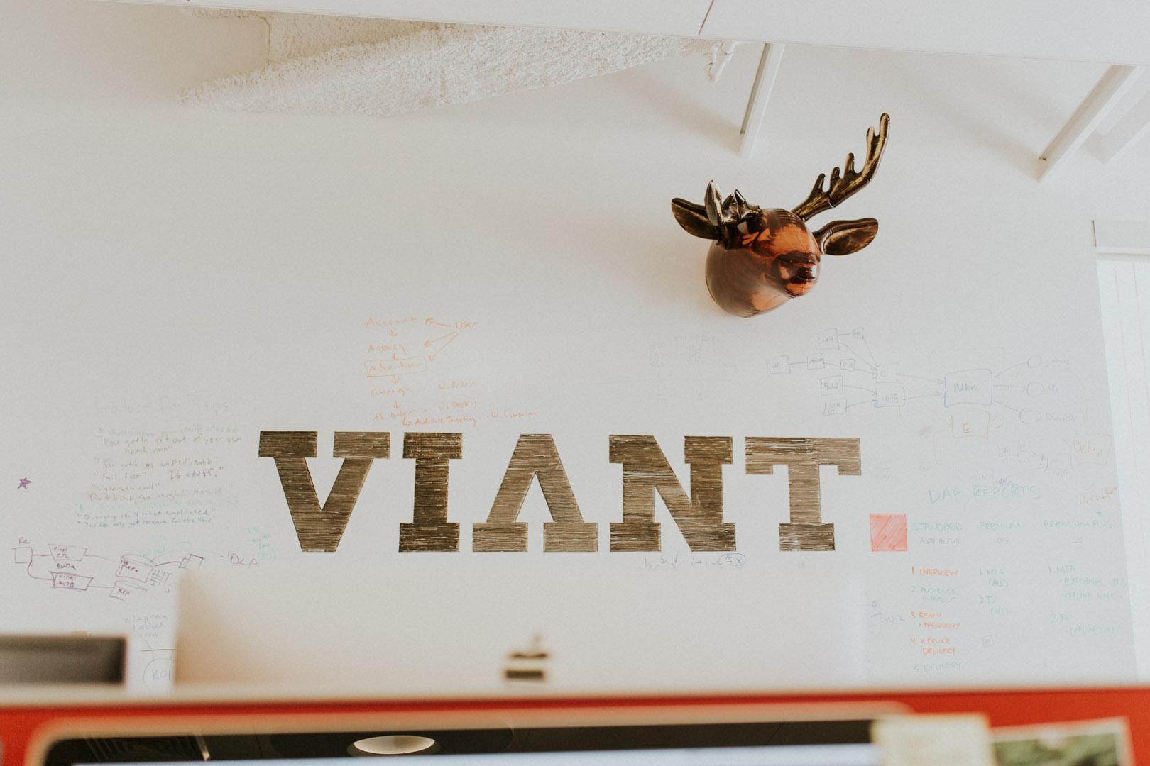Viant-001.jpg