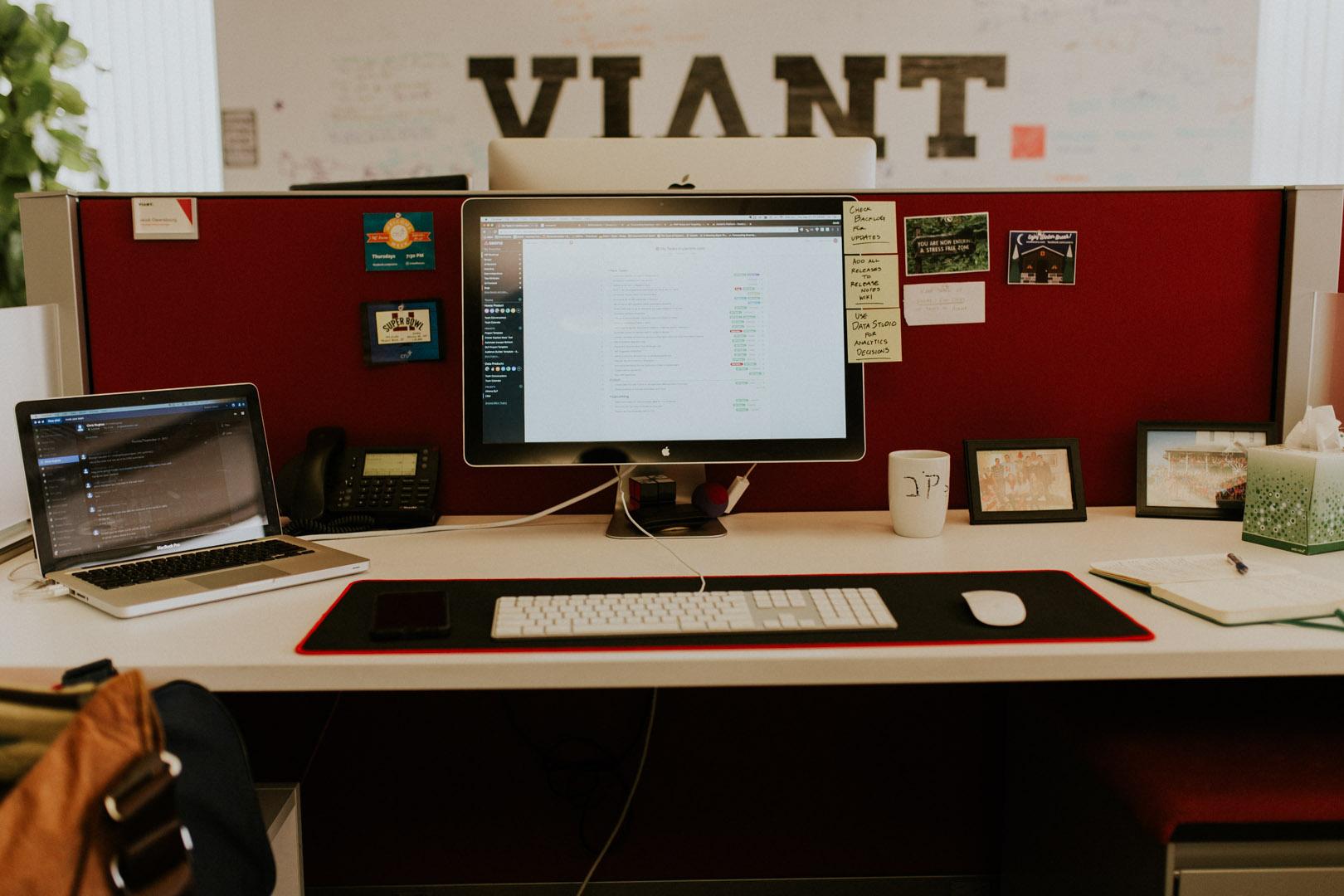 Viant-002.jpg