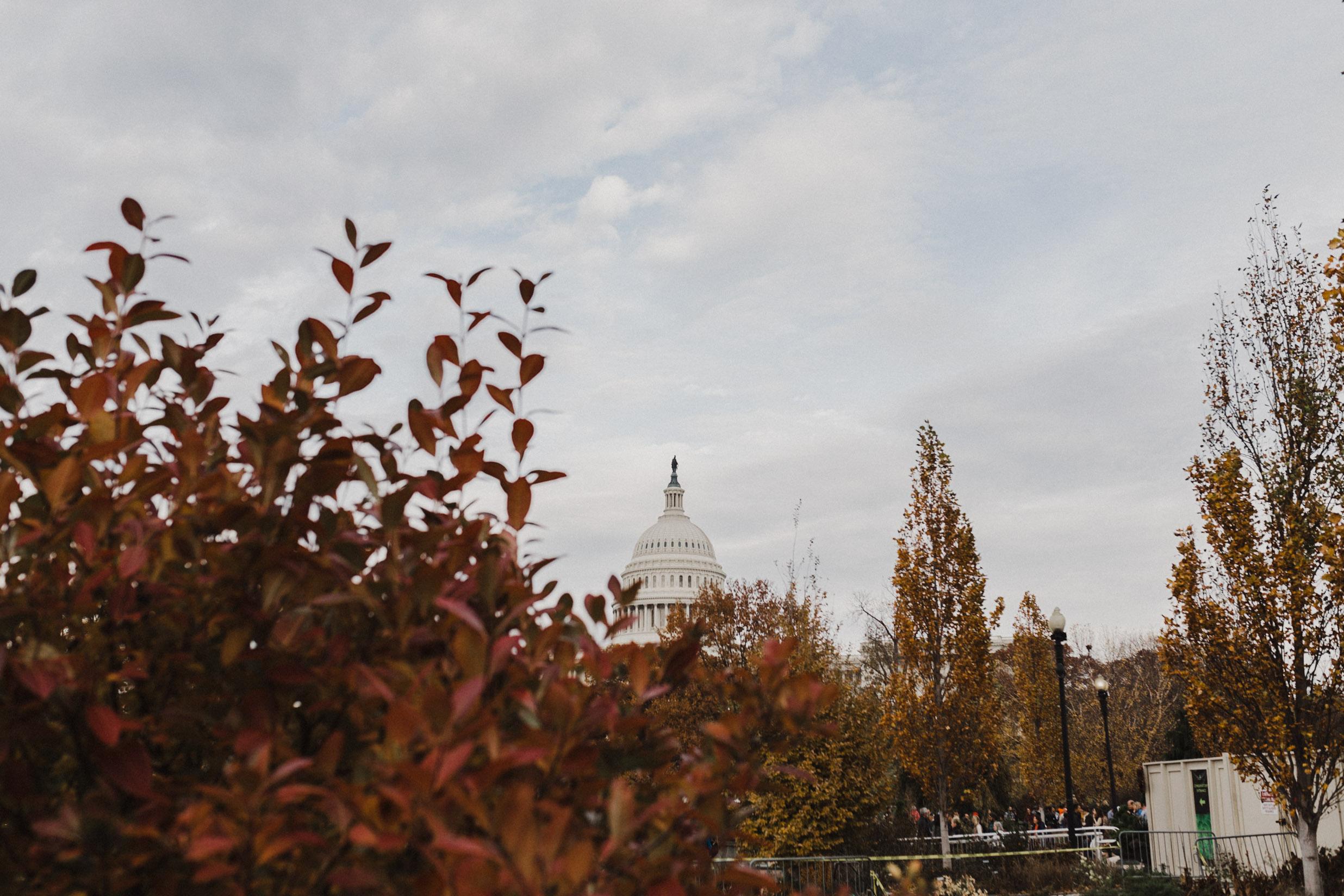 Washington-422.jpg