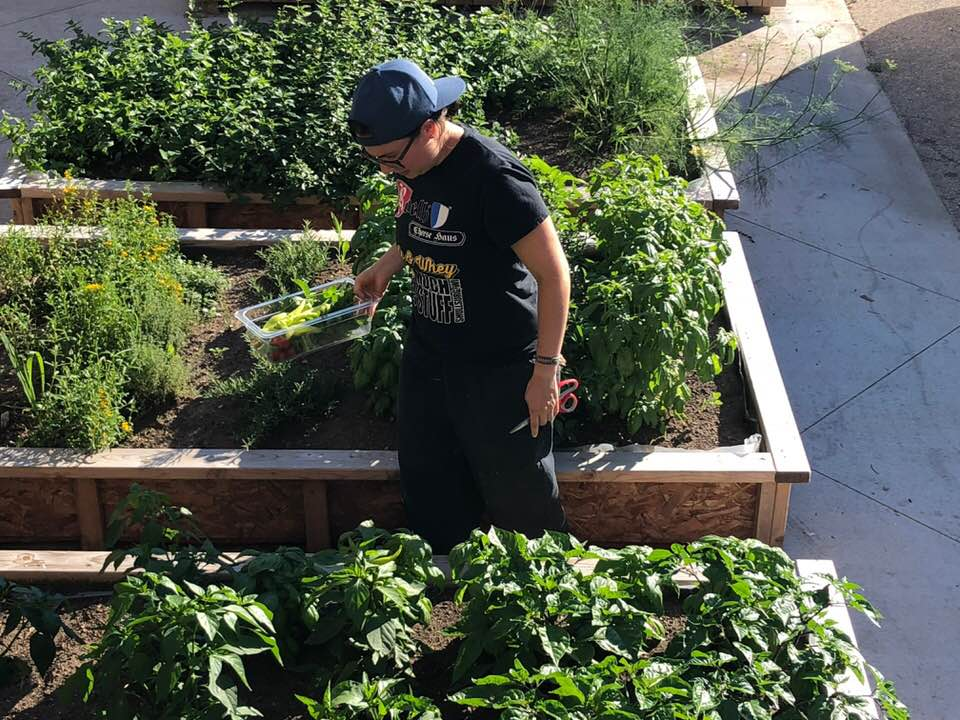 Executive Chef Jen Tillou snips some fresh herbs and checks out the pepper plans.