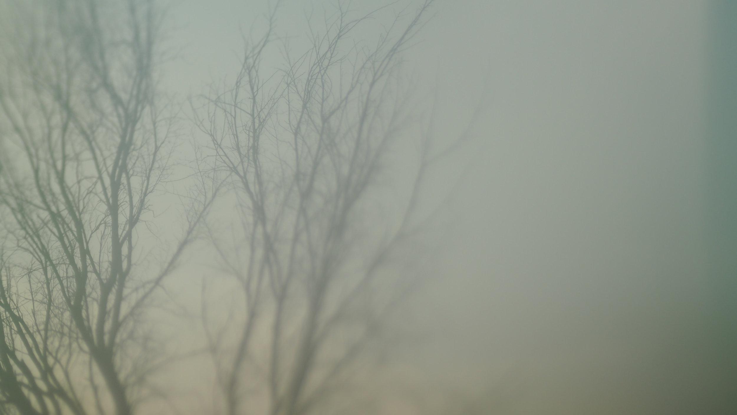 OLYM-140826-6.jpg