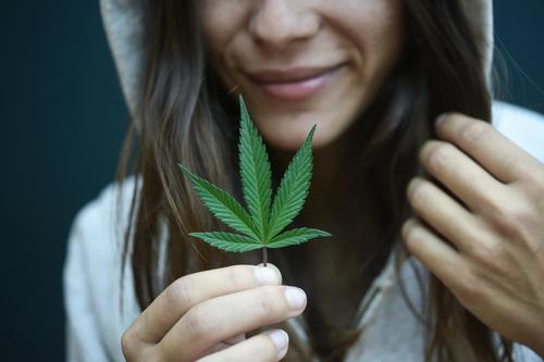 maryland medical marijuana dispensary