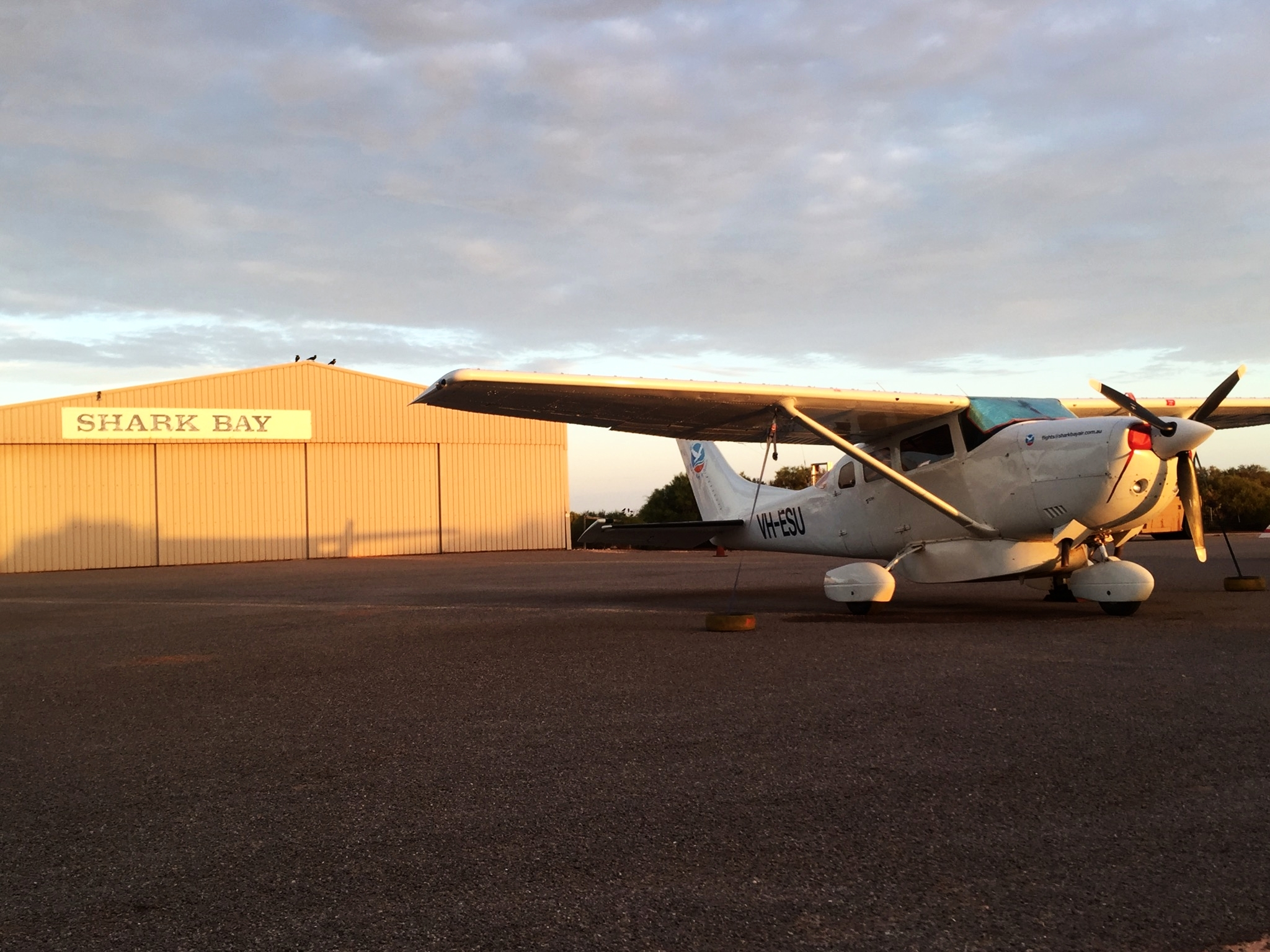 Shark Bay aviation tour