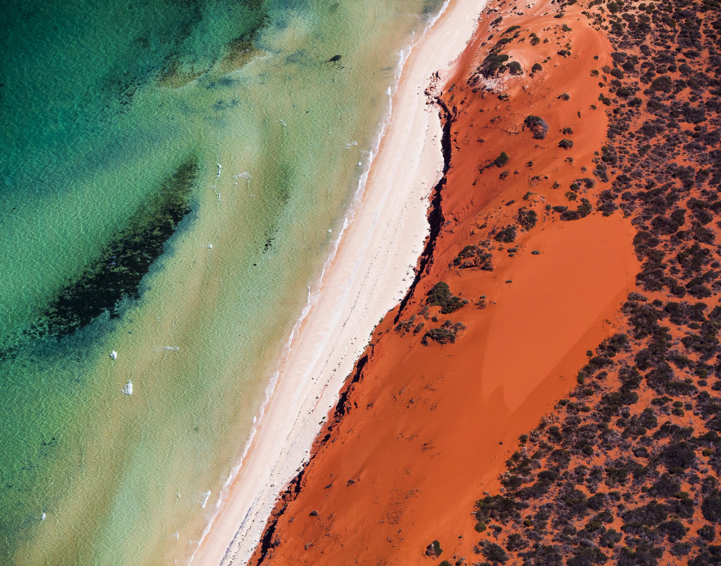 was zu tun in Shark Bay