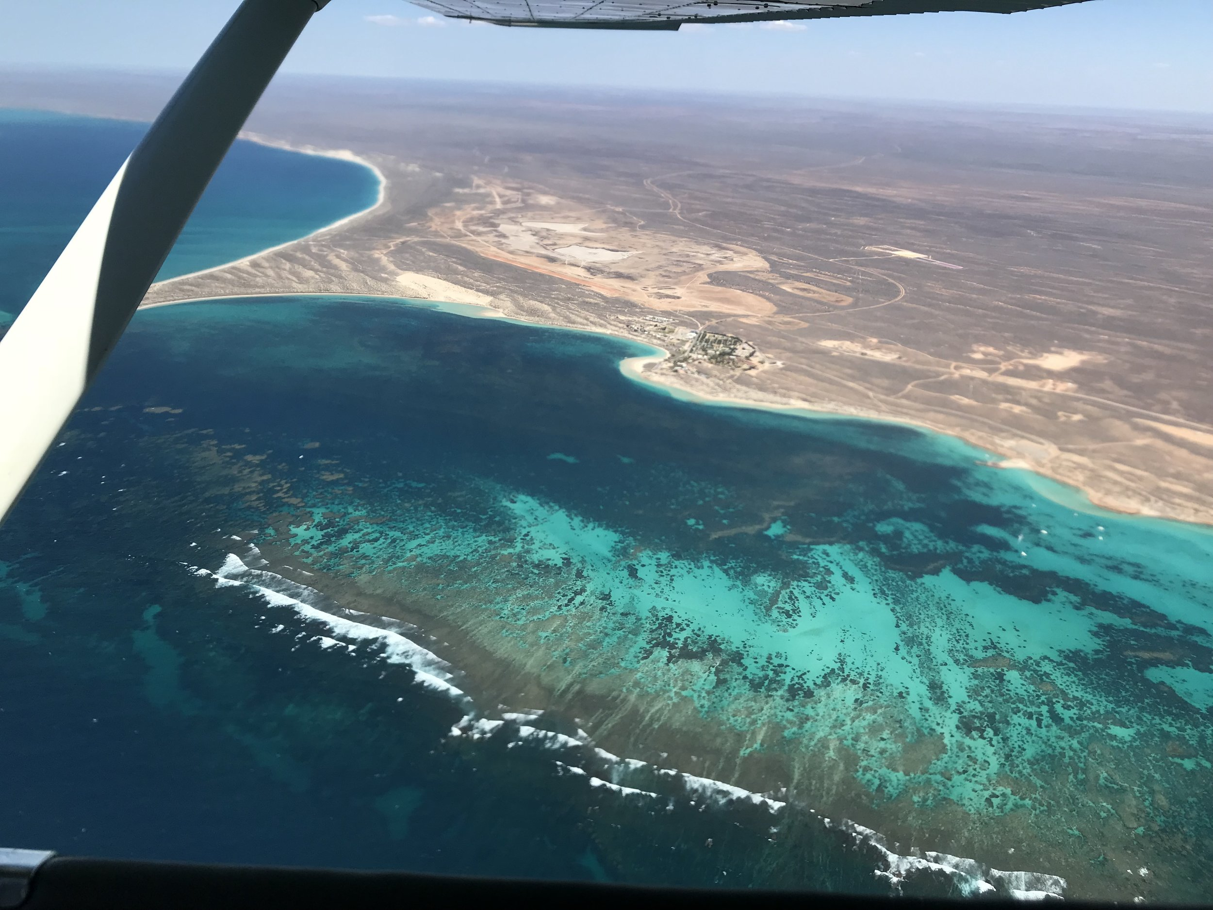 Coral Bay Shark Bay Aviation