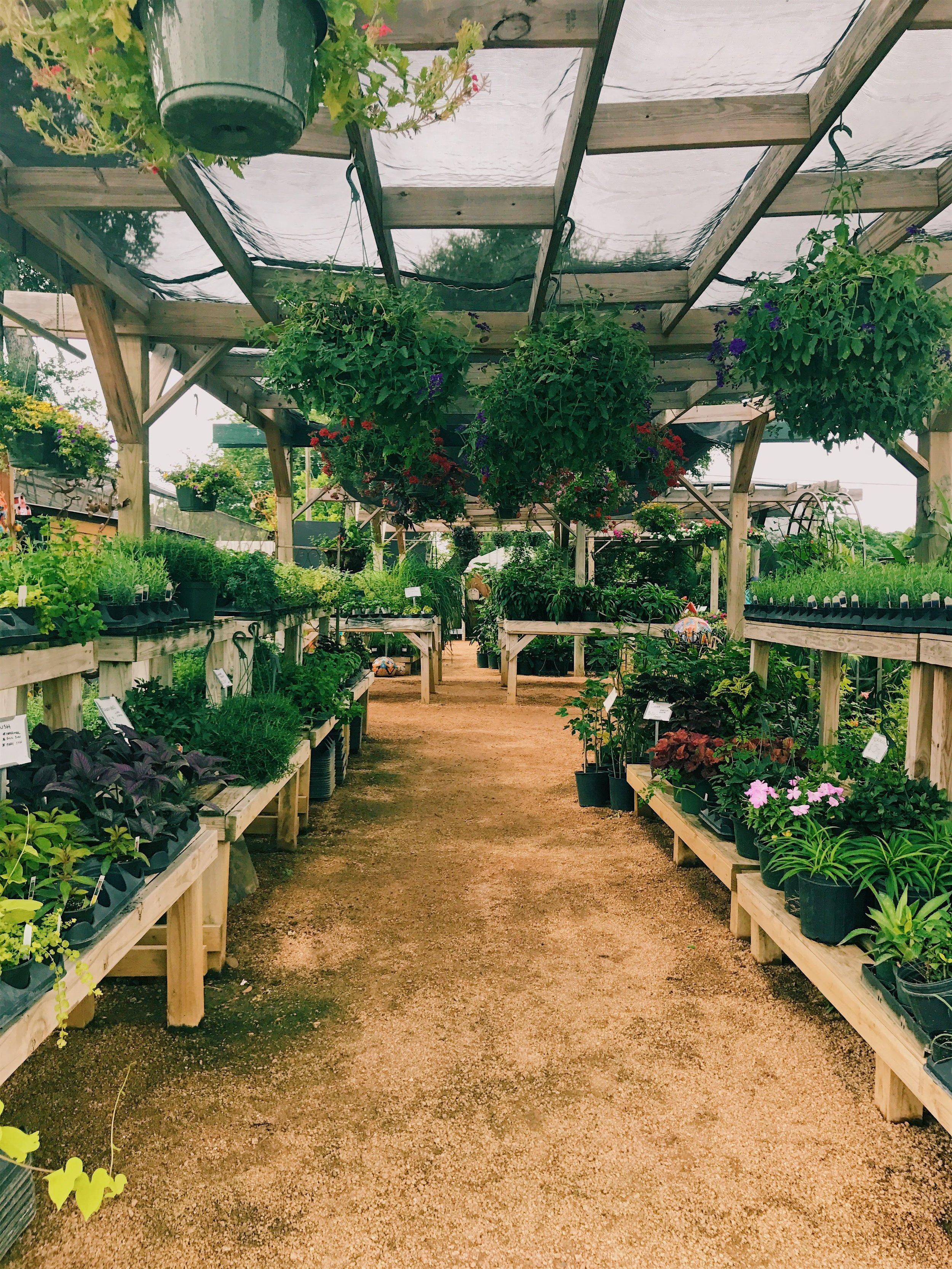 EvergreenGardens.jpg