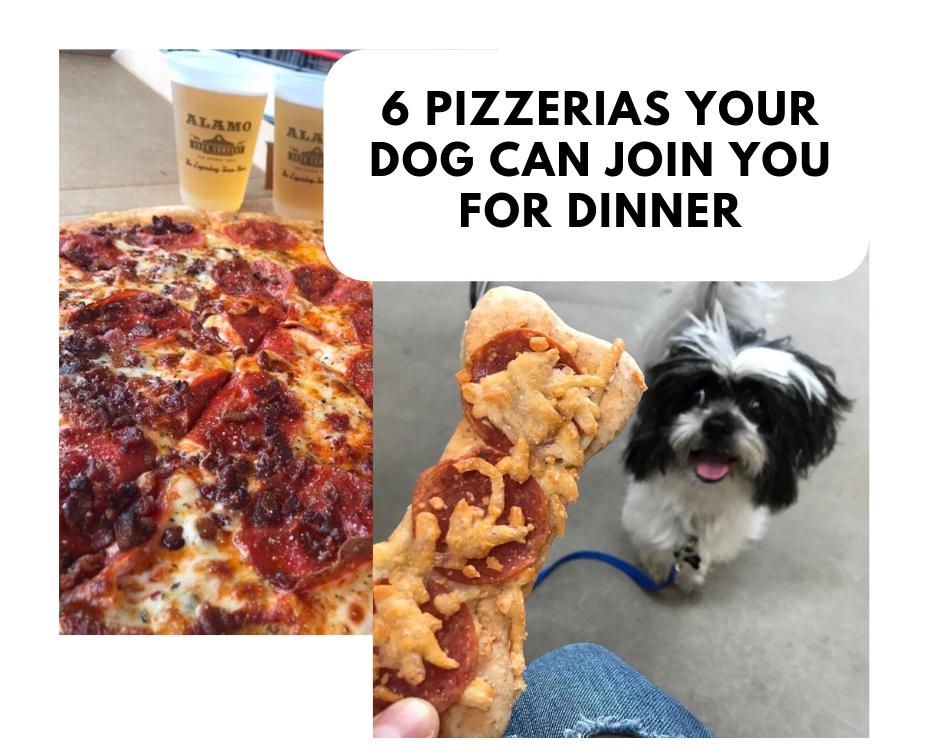 dogfriendlypizzeriasinsanantonio