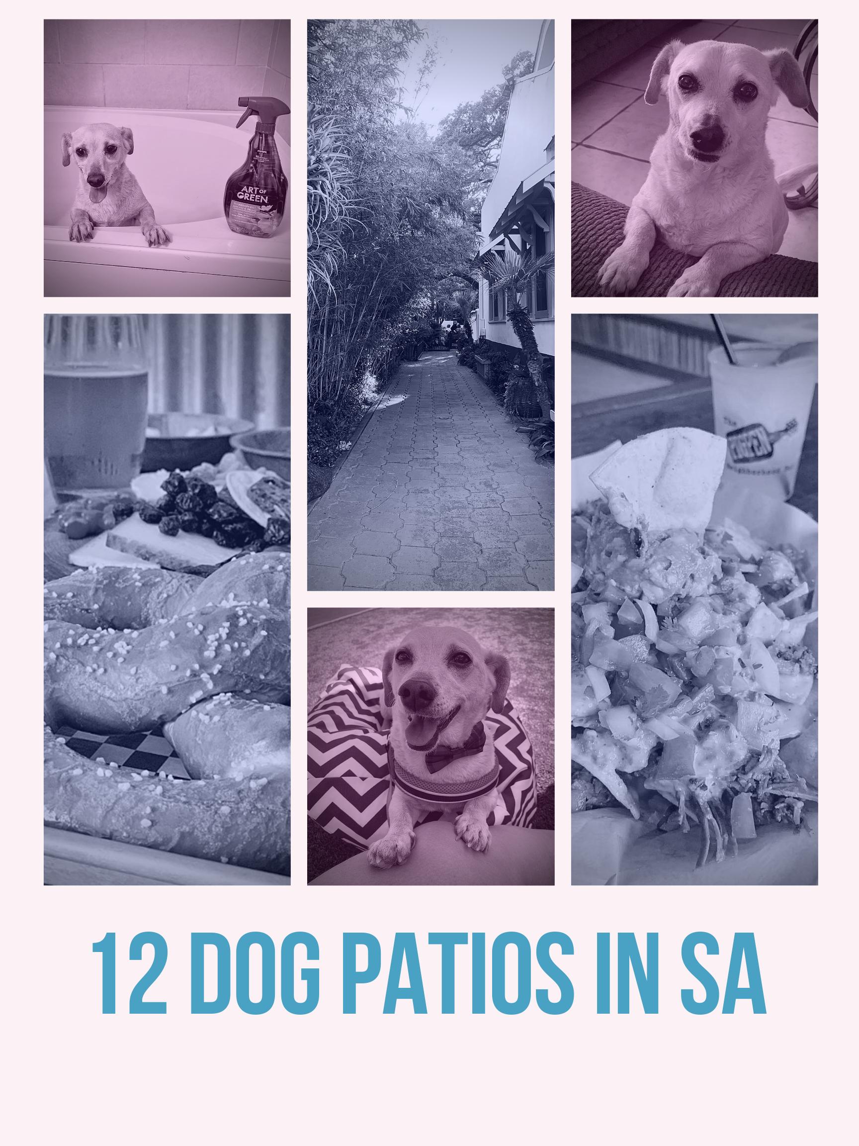 dog patios in san antonio tx
