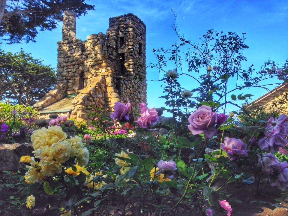 hawk tower through roses.jpg