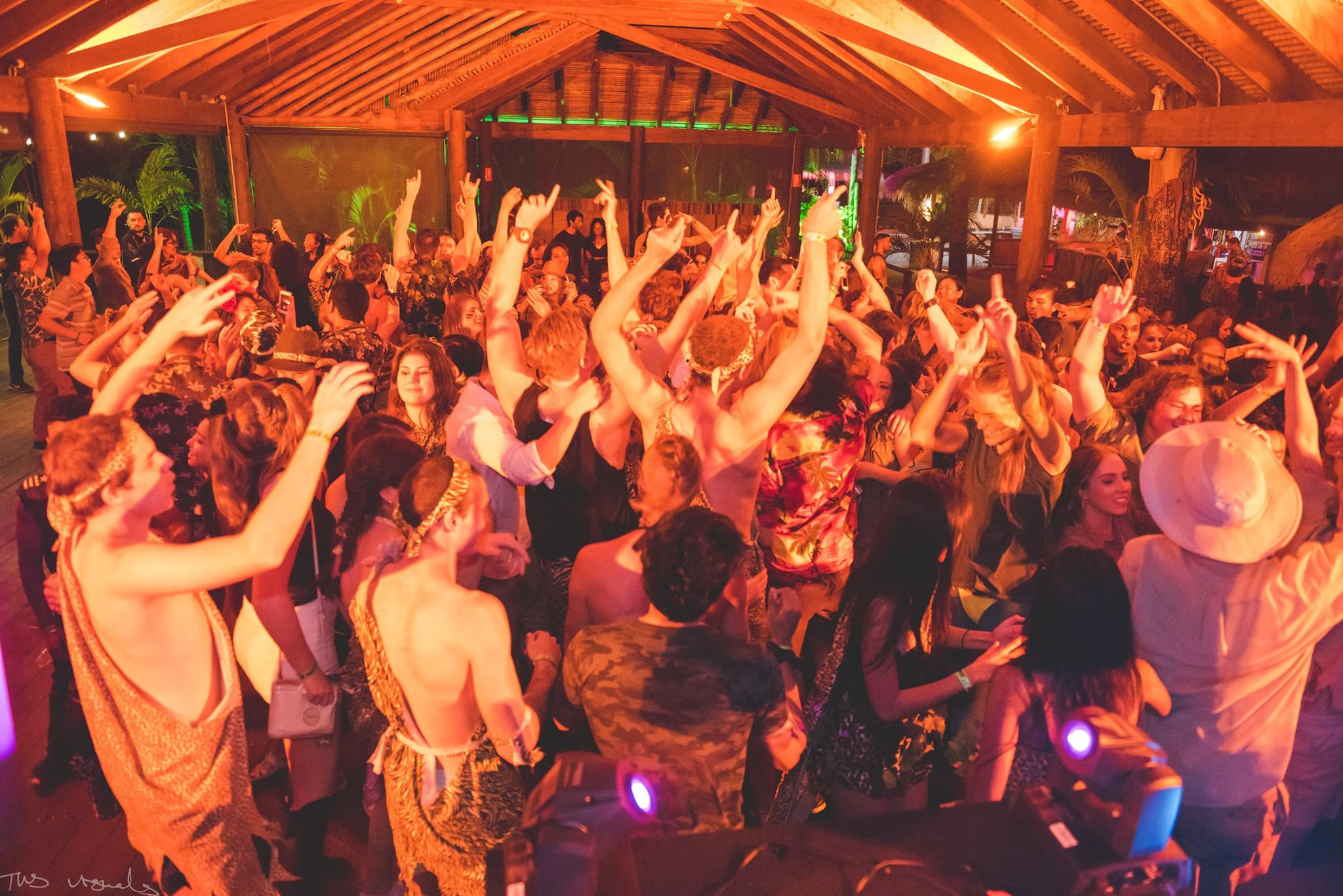 Jungle Party 6.jpg