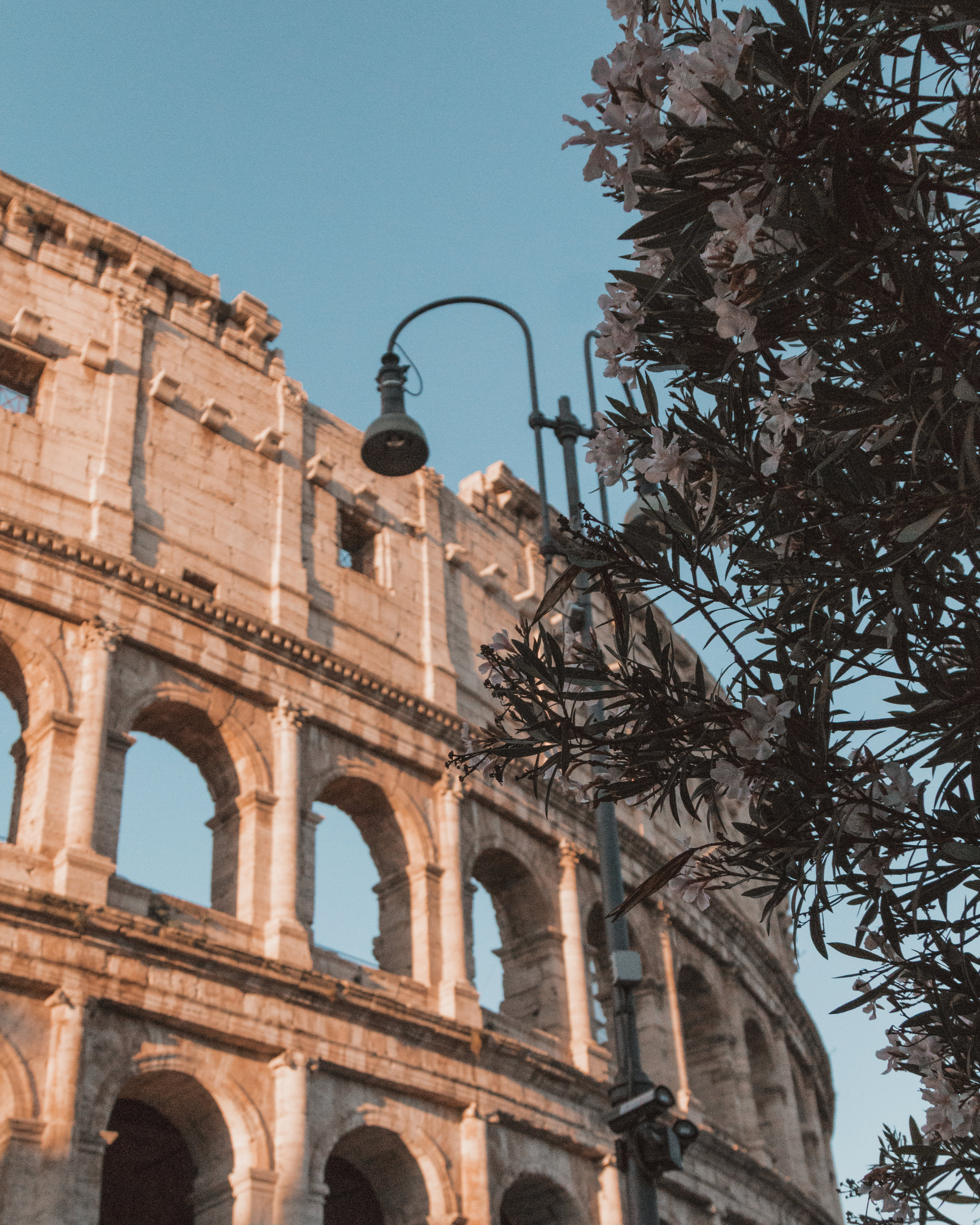 colosseum rome italy photography best places things to do monuments