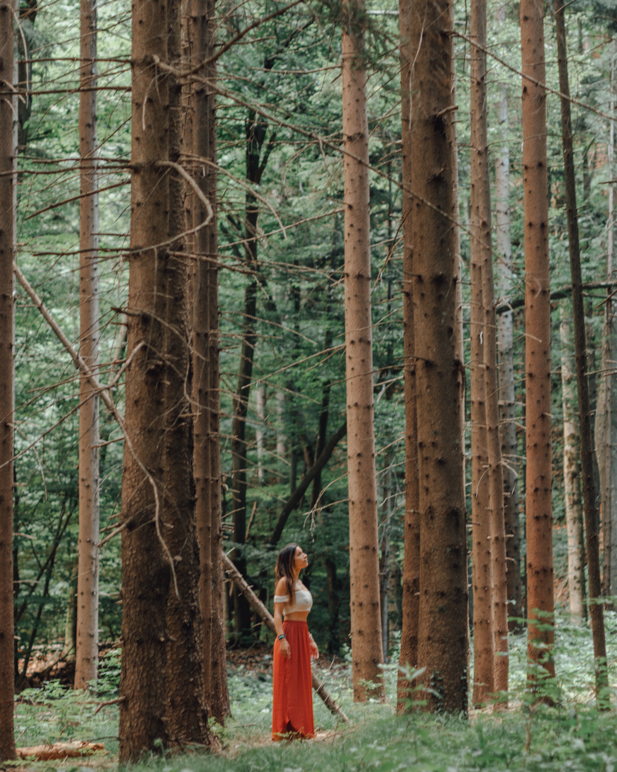 nature forest trees girl travel slovenia lake bled best places interrail budget