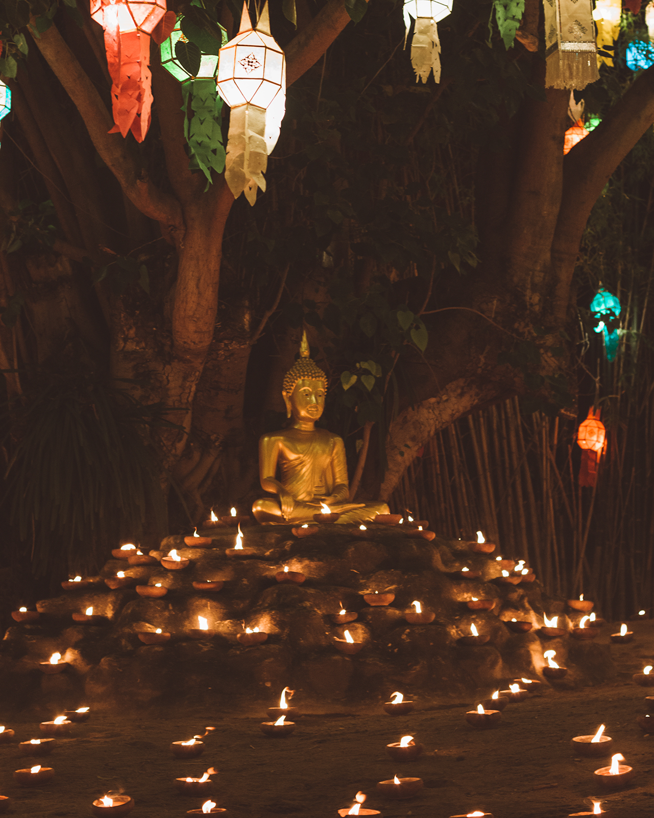 chiang mai lantern festival buddh all you need to know lifetime experience thailand asia