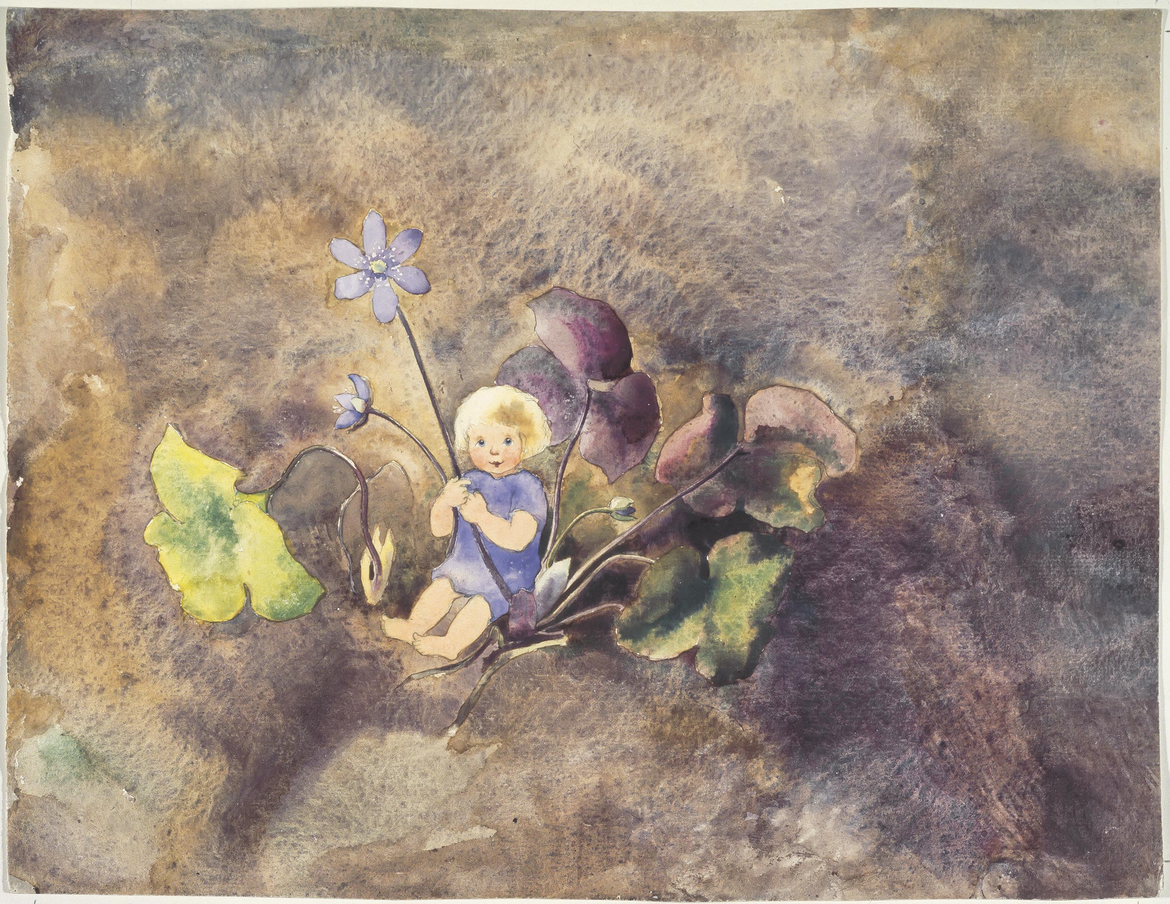 ||Kind mit Leberblume..Child with liverwort||