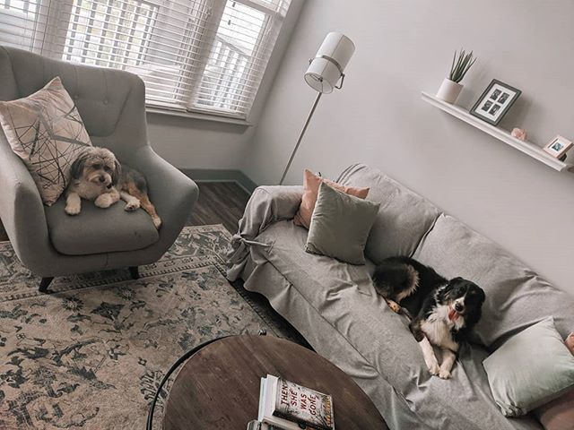 the fluff scruff crew 🐾 . . . #dogs #dogstagram #decor #minimalinterior #minimalistdecor #saturday #saturdaymorning #lifestyle #greydecor #cooltone