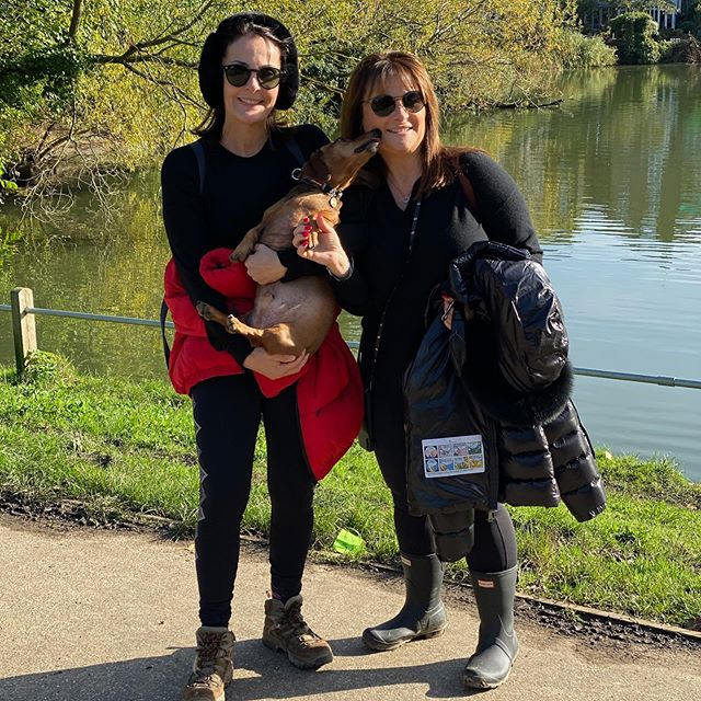 Enjoying a beautiful day out on Hampstead Heath with Prince Mustard. #london #hampstead #kenwood #walking #unitedkingdom