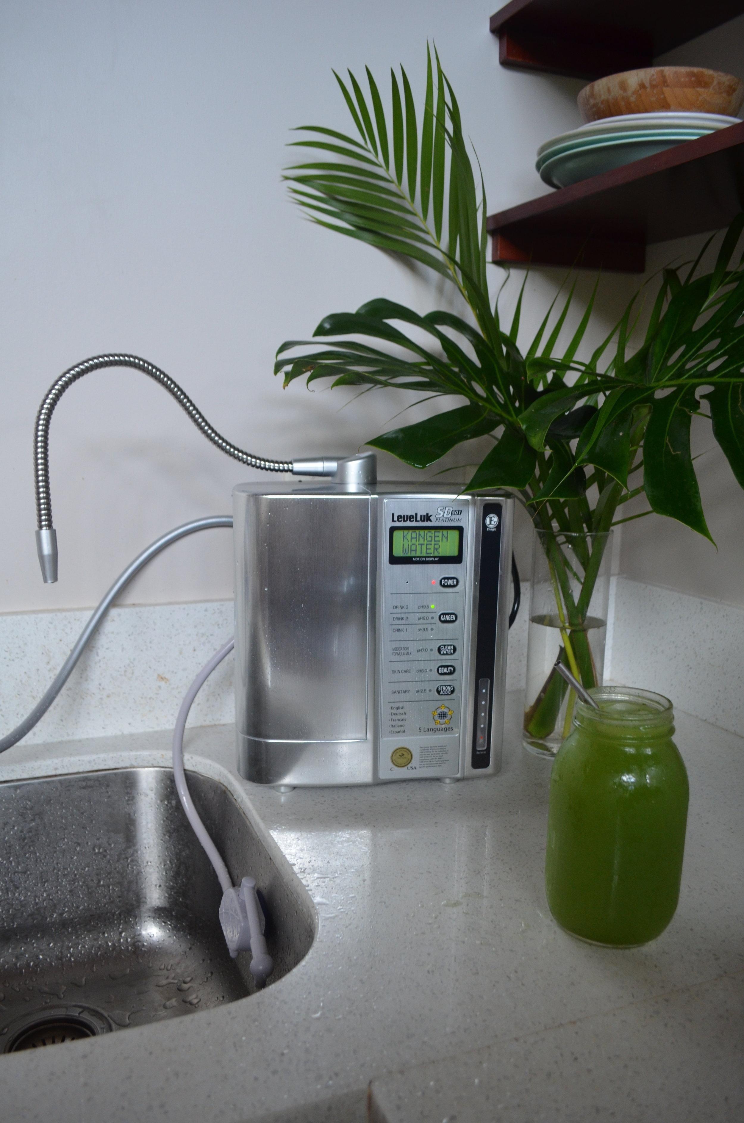 Kangen Water Machine.JPG