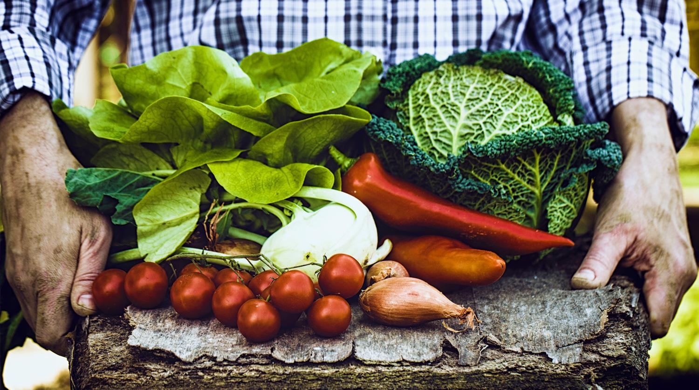 Local farm-to-table produce