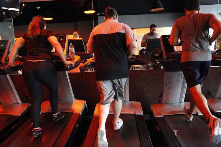 People run on treadmills in Miami. In recent years, the wellness trend has taken off at sea on cruise ships. New cruise line Blue World Voyages plans to cater specifically to active travelers. José A. Iglesias jiglesias@elnuevoherald.com