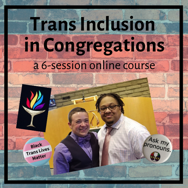 Online Courses — Transforming Hearts Collective