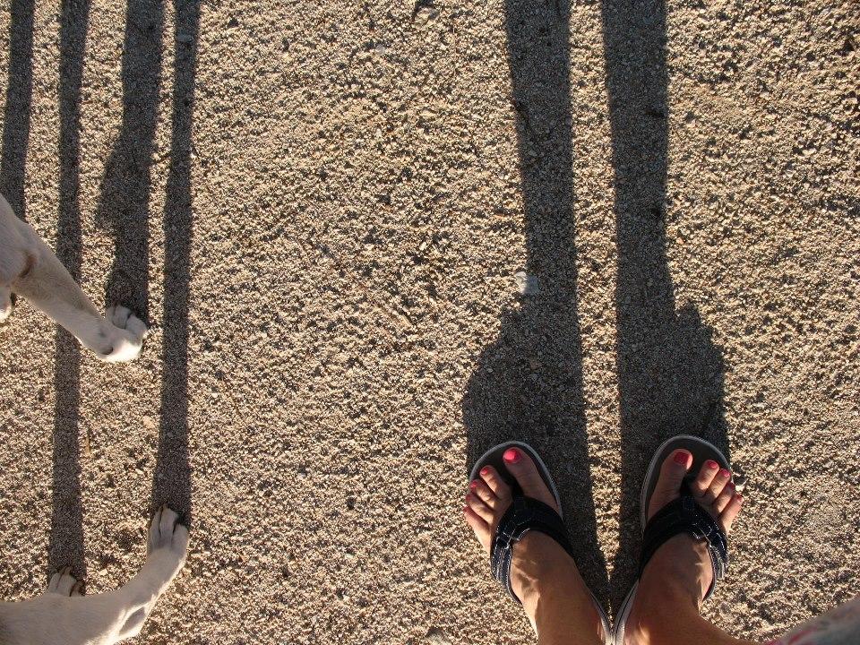 lydia shadow.jpg