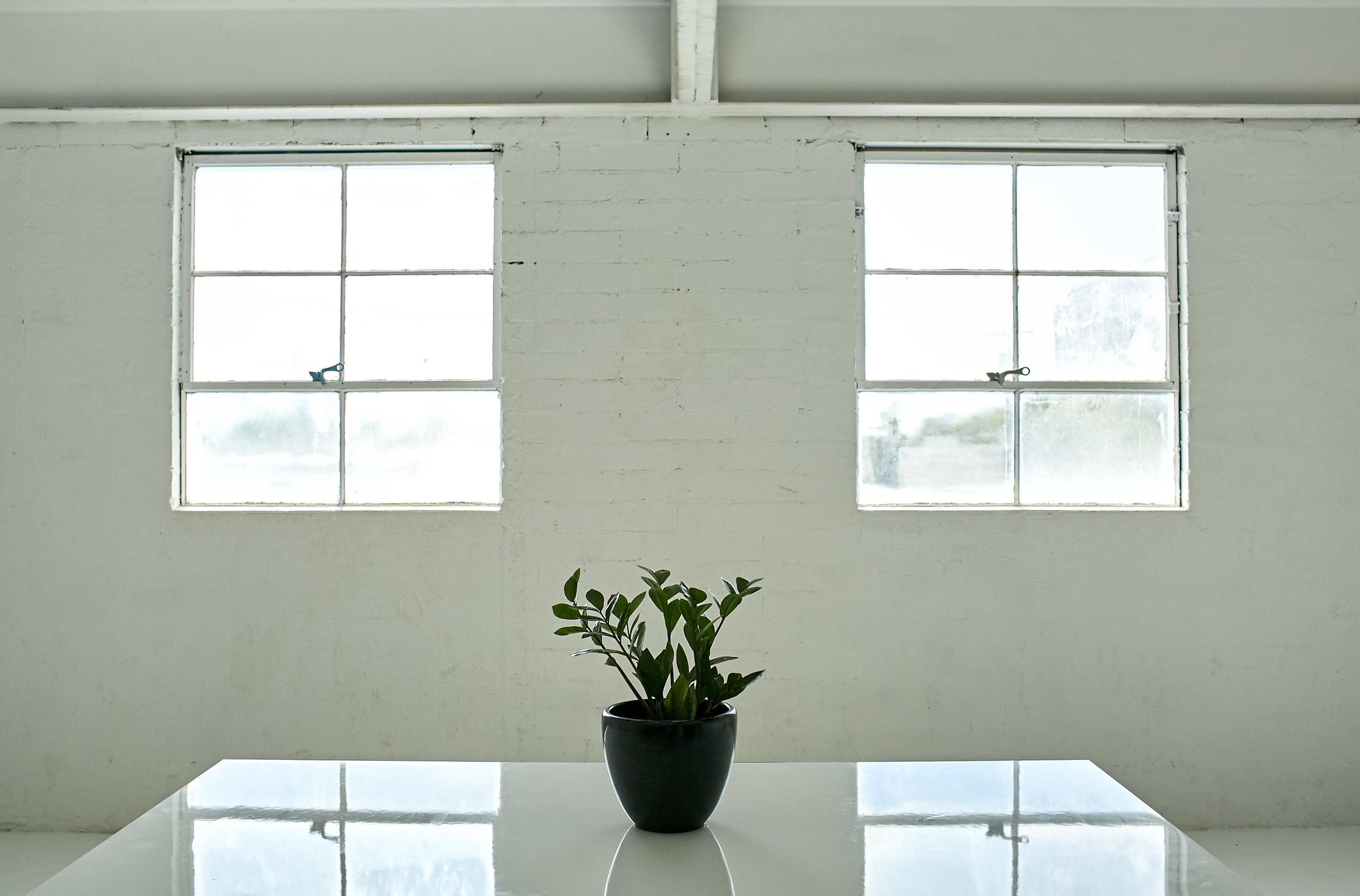 blok-van-buren-plant