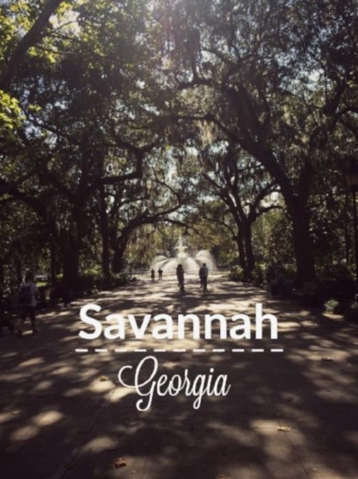 savannah-title.jpg