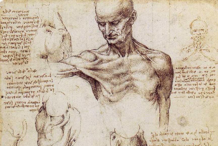 Leonardo-da-Vinci-Drawing.-Image-via-drawingsofleonardo.org_.jpg