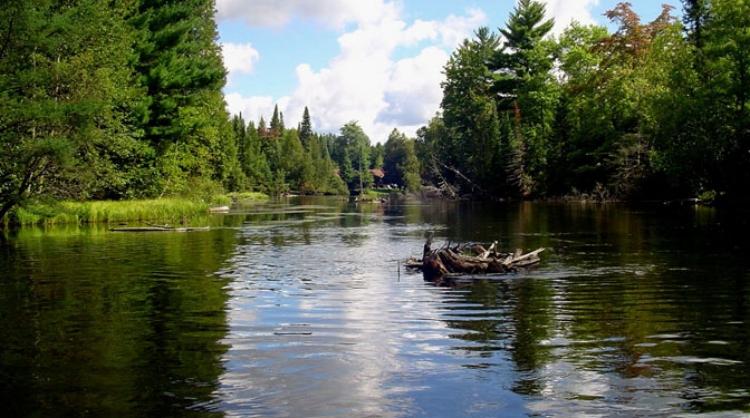 Michigan Riverfront Au Sable River Property