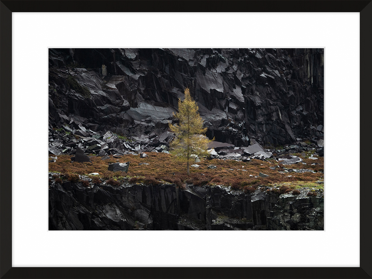 Alone on Dinorwic - A lone tree found on one of the many layers across the quarry of Dinorwic, Llanberis, Wales. The tree is unreachable by foot and can only be seen from a distance as it stands alone on its own level.Prints are available from Treacle Gallery in 4 different size options and frame colour options to match your interior perfectly. Bespoke sizes and framing options available contact us for more information.