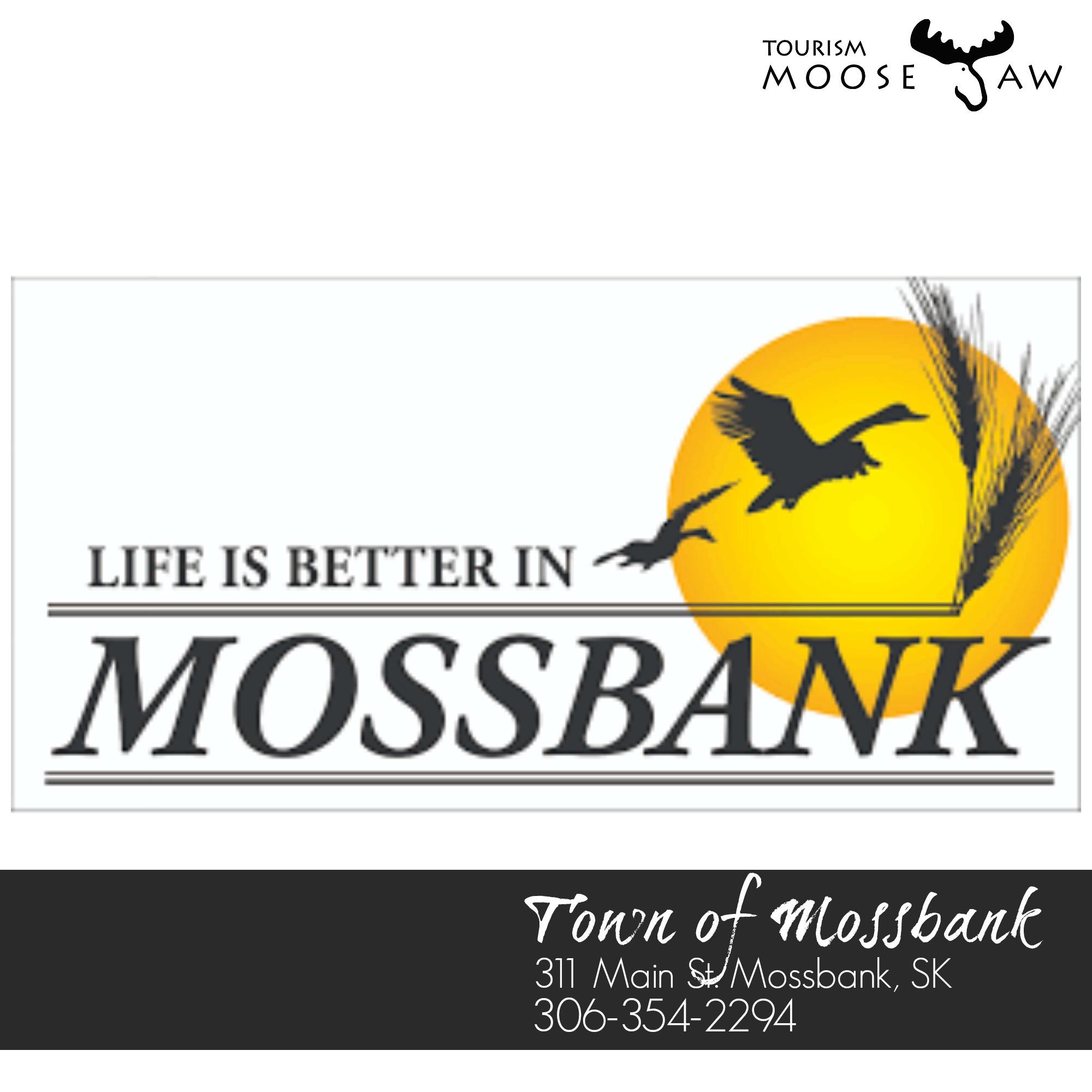 mossbank.jpg