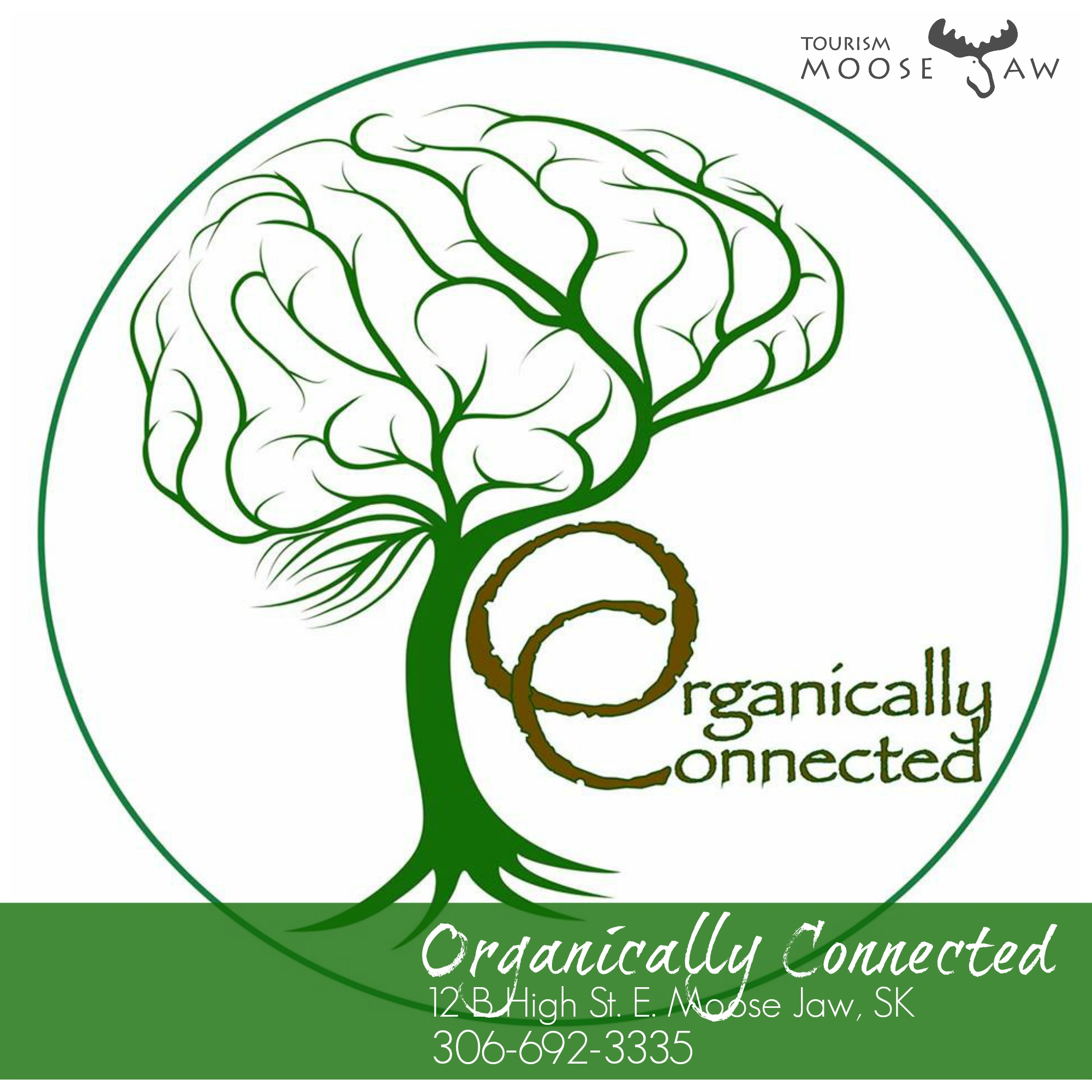 organically connected.jpg