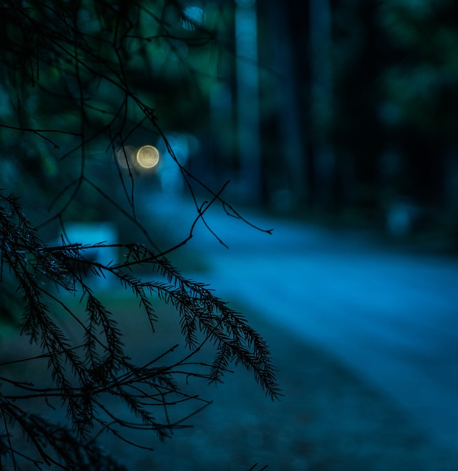 Are you afraid of the dark? Saskatchewan is known for its many ghost stories – join us for a walk to the Nicholle Homestead after dark and hear some spooky tales from this area.   Curious what other events are taking place in provincial parks this summer? Check out our website:  https://www.tourismsaskatchewan.com/search_parks?pagemode=Events   Meet at the Buffalo Pound Entry Gate and drive to the Nicolle Homestead. They should arrive 15 minutes early and bring their own vehicles.