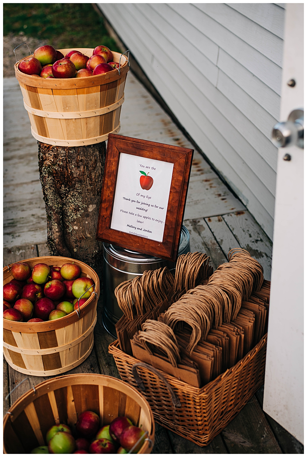 Saranac Lake Wedding Photographer_0211.jpg