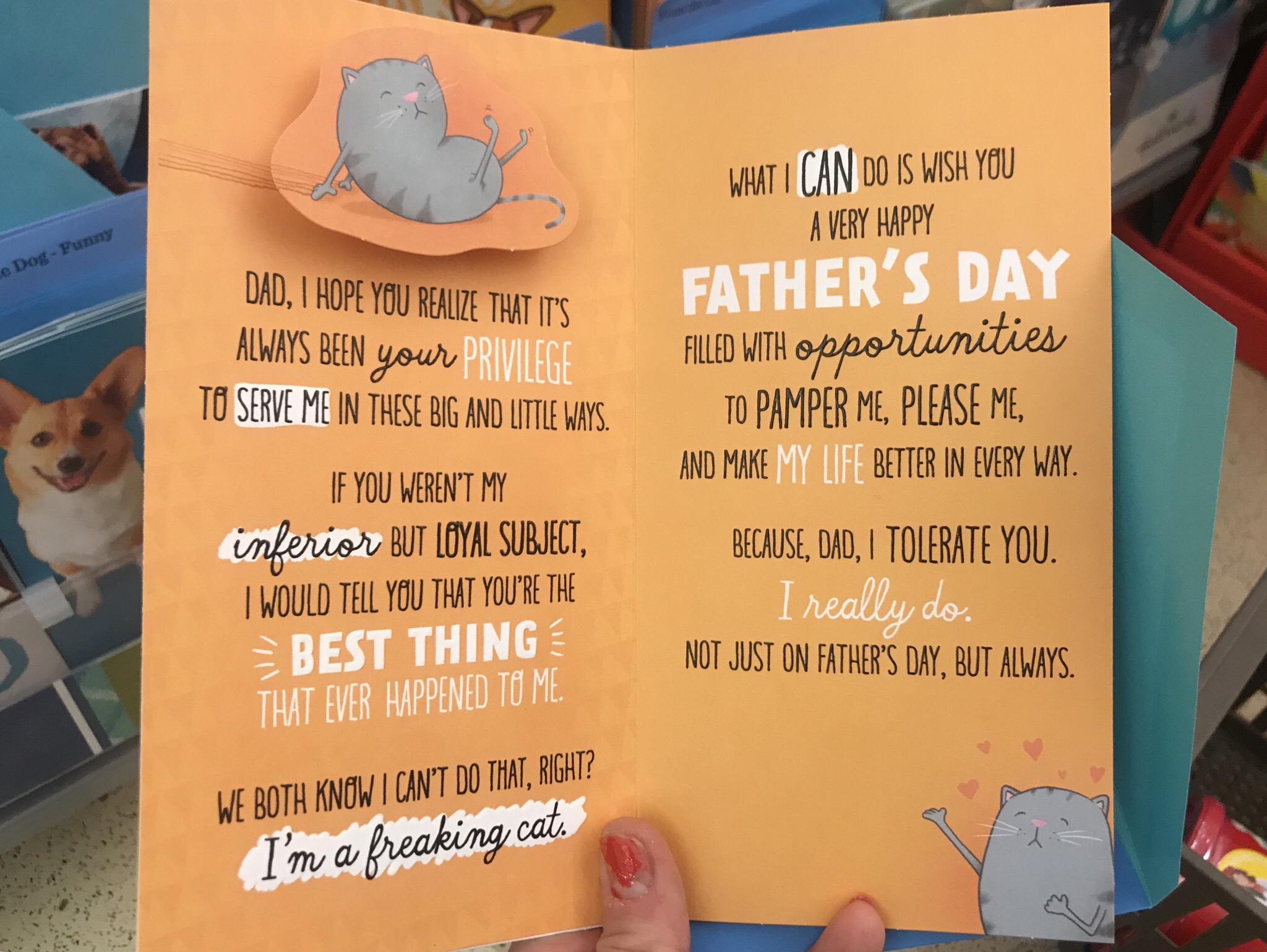 I did almost buy this father's day card for John and sign it from the cats, but I just sent him a picture to save $5 instead, lol. (He HATES the entire concept of calling pets your children, hah).
