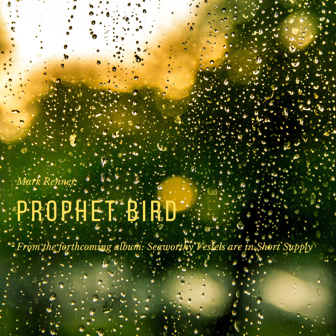 26 October 2019- Prophet Bird   is the lead-in single taken from Mark's forthcoming album:   Seaworthy Vessels are in Short Supply .  The song is available now to preorder from        Bandcamp     ,   as one of four songs featured on the   Prophet Bird EP  , three of which are exclusive to this release. All four songs are available on the limited edition cd, with full- color jacket. Included with the preorder- an immediate download of the single, and the rest of the material becomes available at the end of November, and will eventually feature on iTunes, Amazon and the usual streaming/ dl sources.