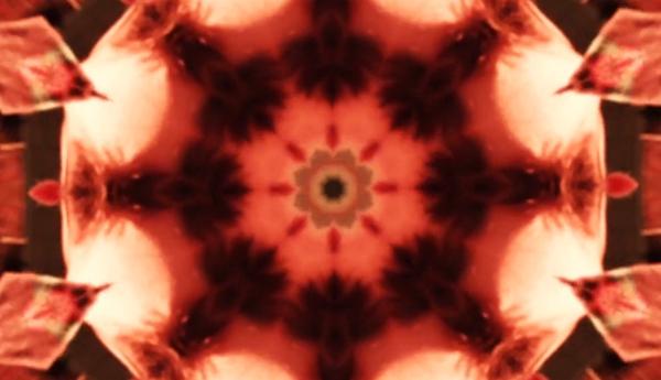 TropicHarbour_MusicVideo_Colour_6.jpg