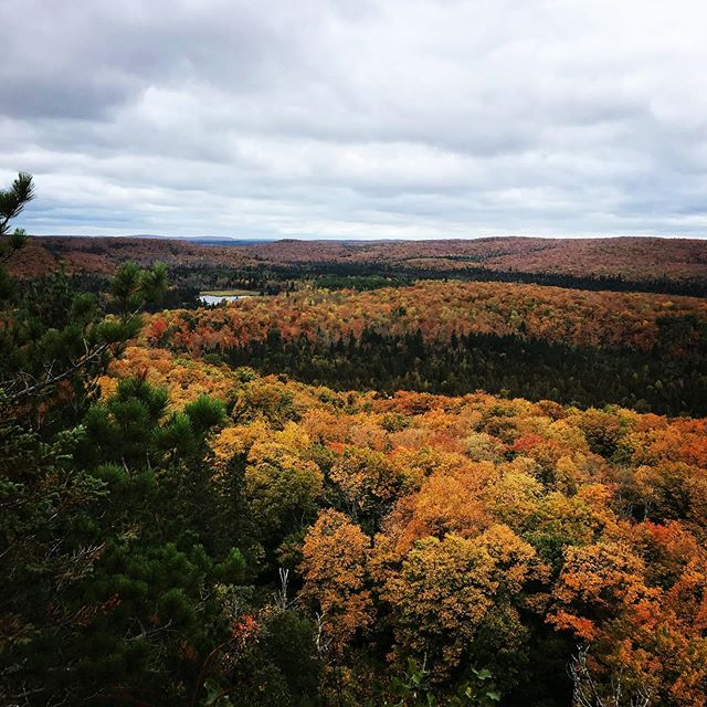 Fall colors are popping up along the north shore! #donorthmn
