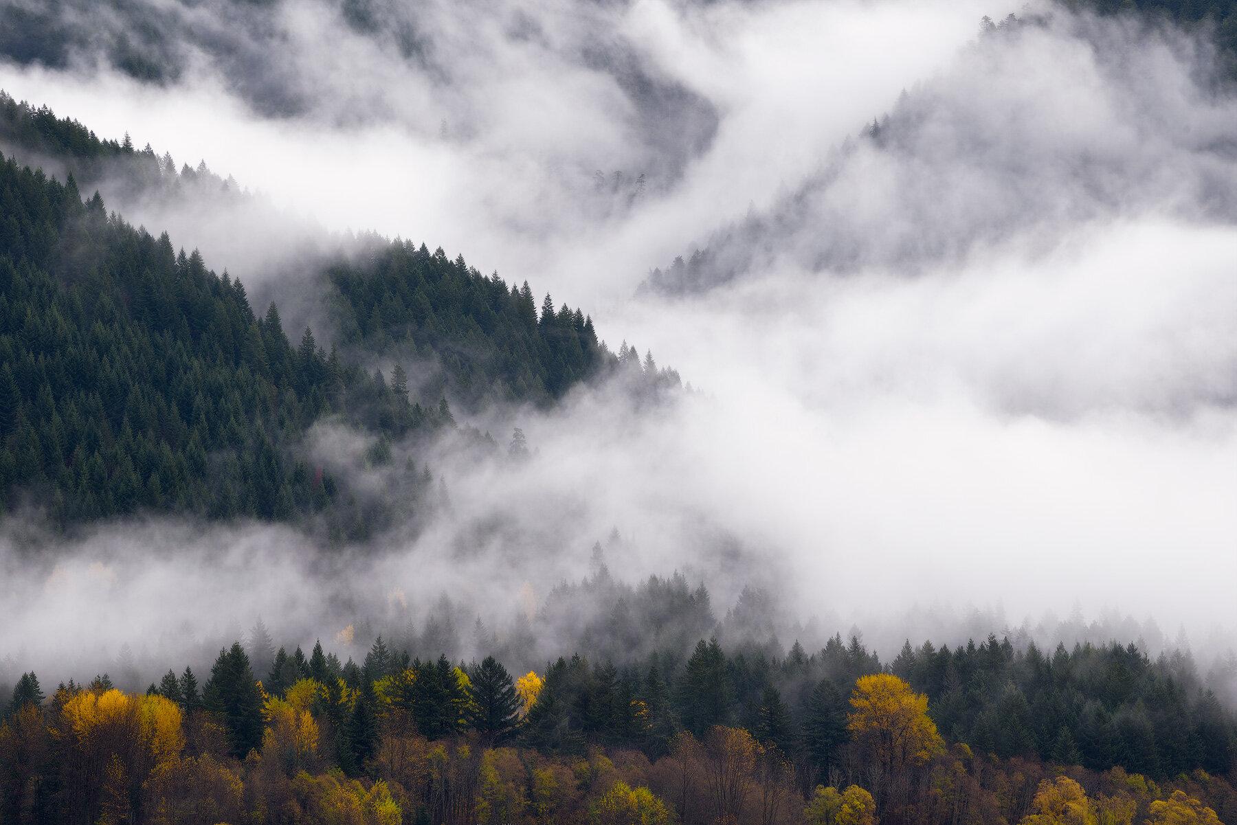 Mists of Eternity