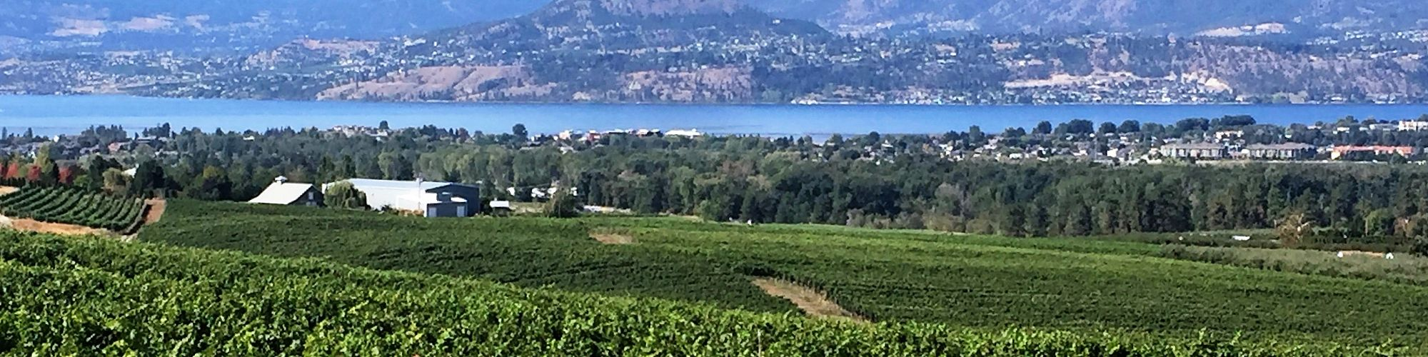 The Mission's South Slopes   Overlooking Okanagan Lake