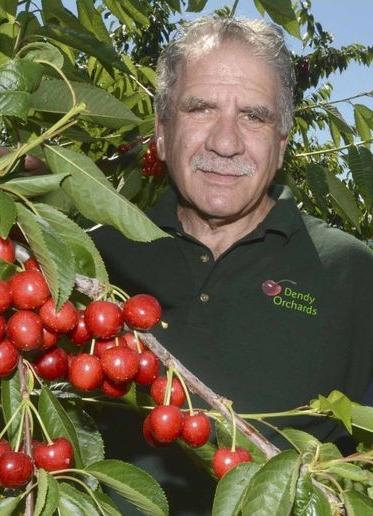Domenic Rampone   Kelowna Orchardist
