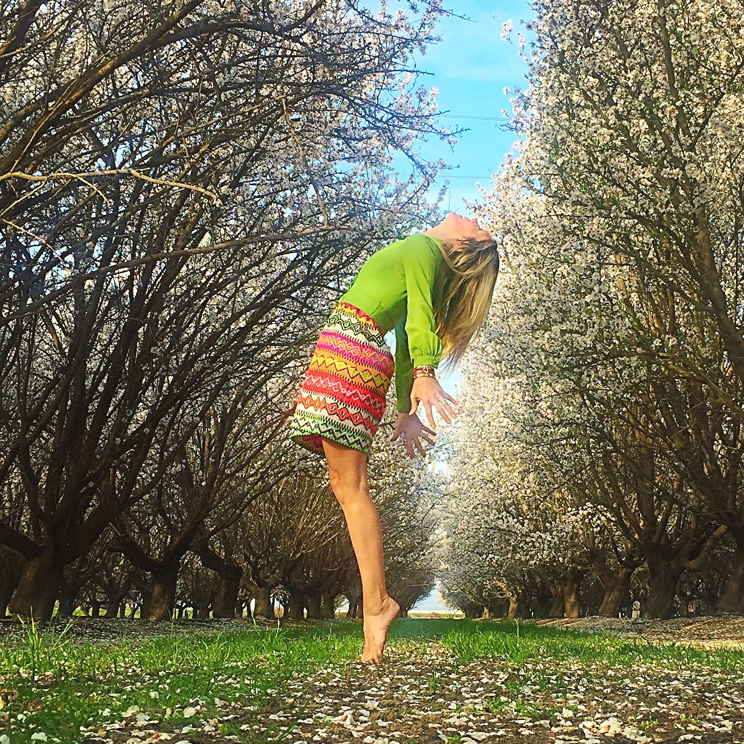 pb spring trees tadasana.jpeg