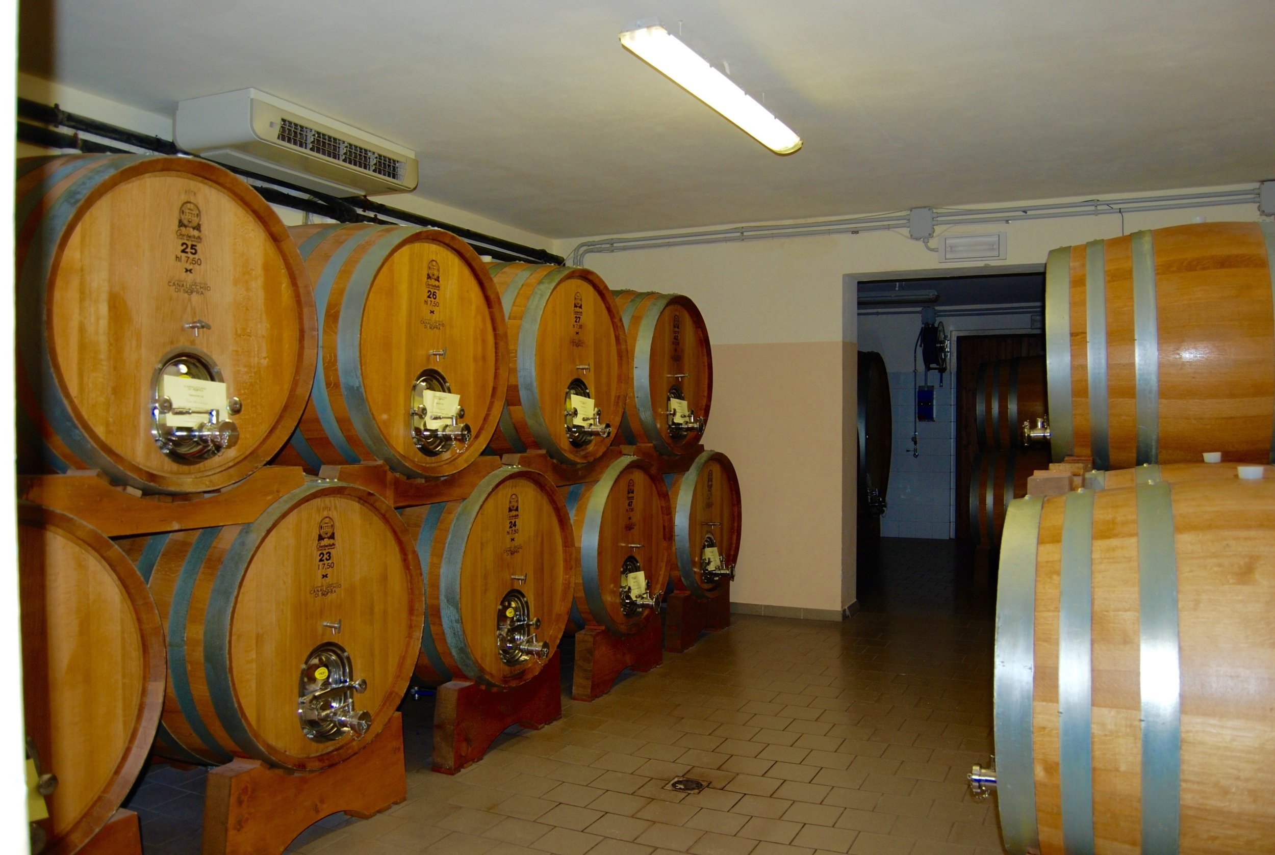 Part of the cellar at Canalicchio di Sopra.