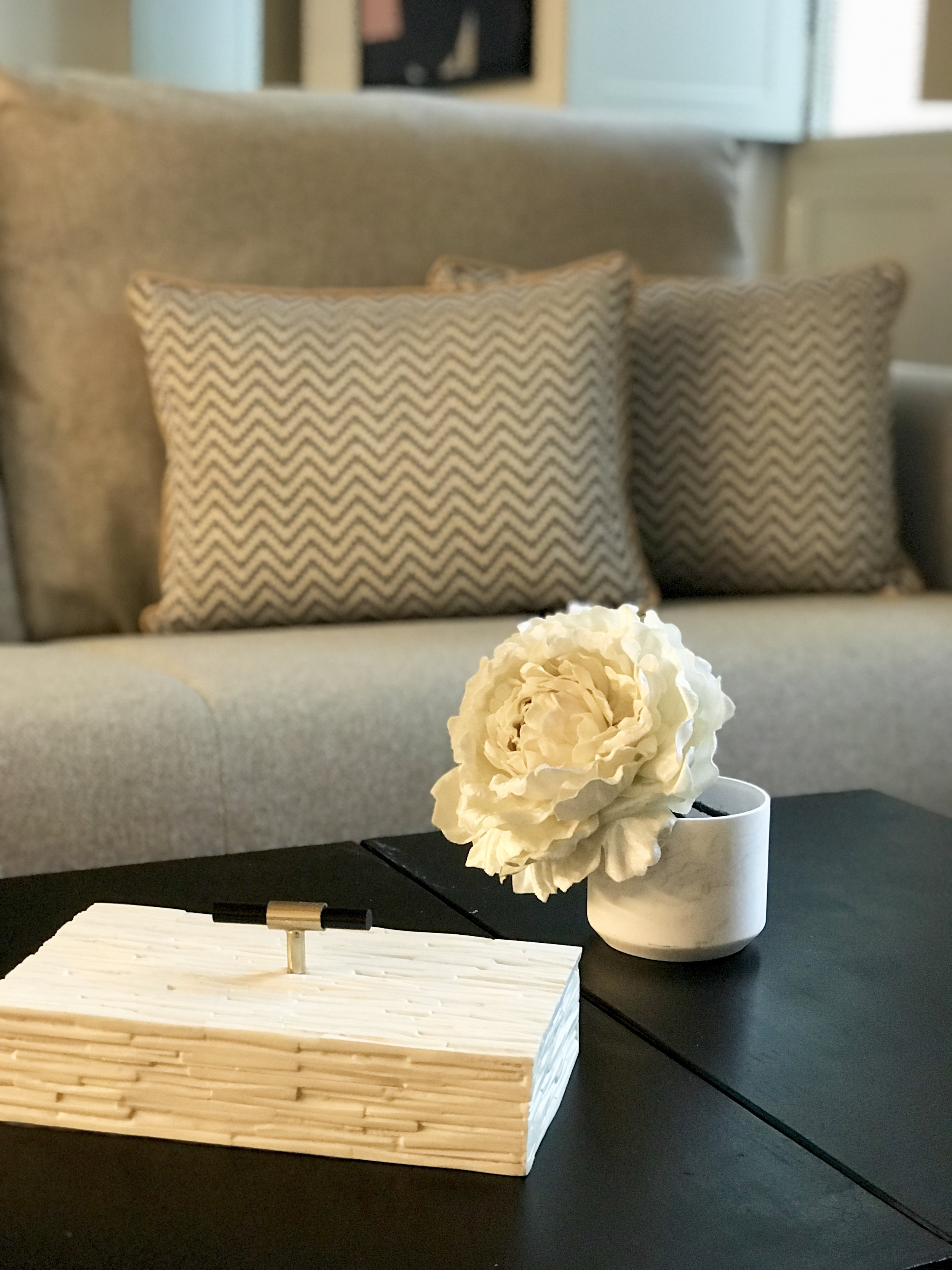 Elegant single white blossom dramatically displayed on a coffee table with sofa.