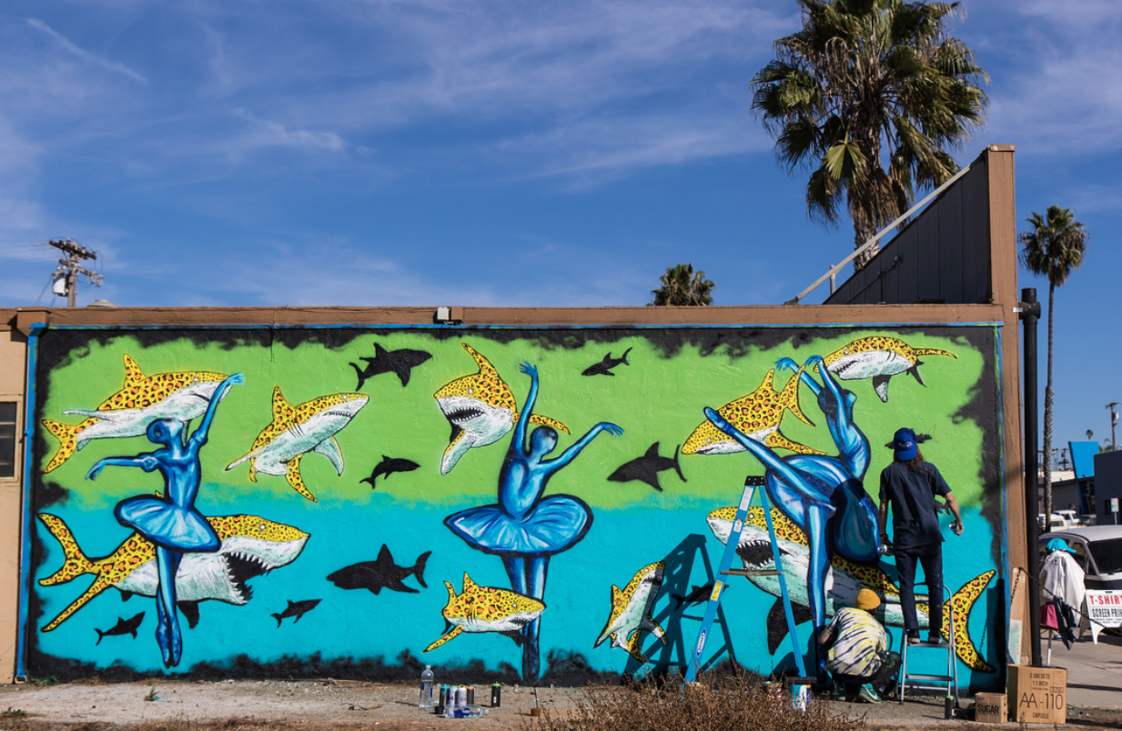 We are beyond grateful for BB and Hirotton for bringing art and dance together in the community of Oceanside. Be sure to stop by Wisconsin Ave to check out this work of art!  LEOpard Sharks and LEOtards  ***Photo taken by Breeze Photography