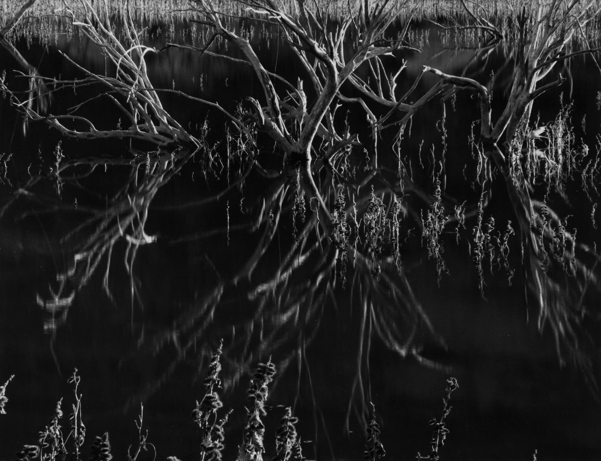 Reflection, Superior, AZ, 2016.jpg