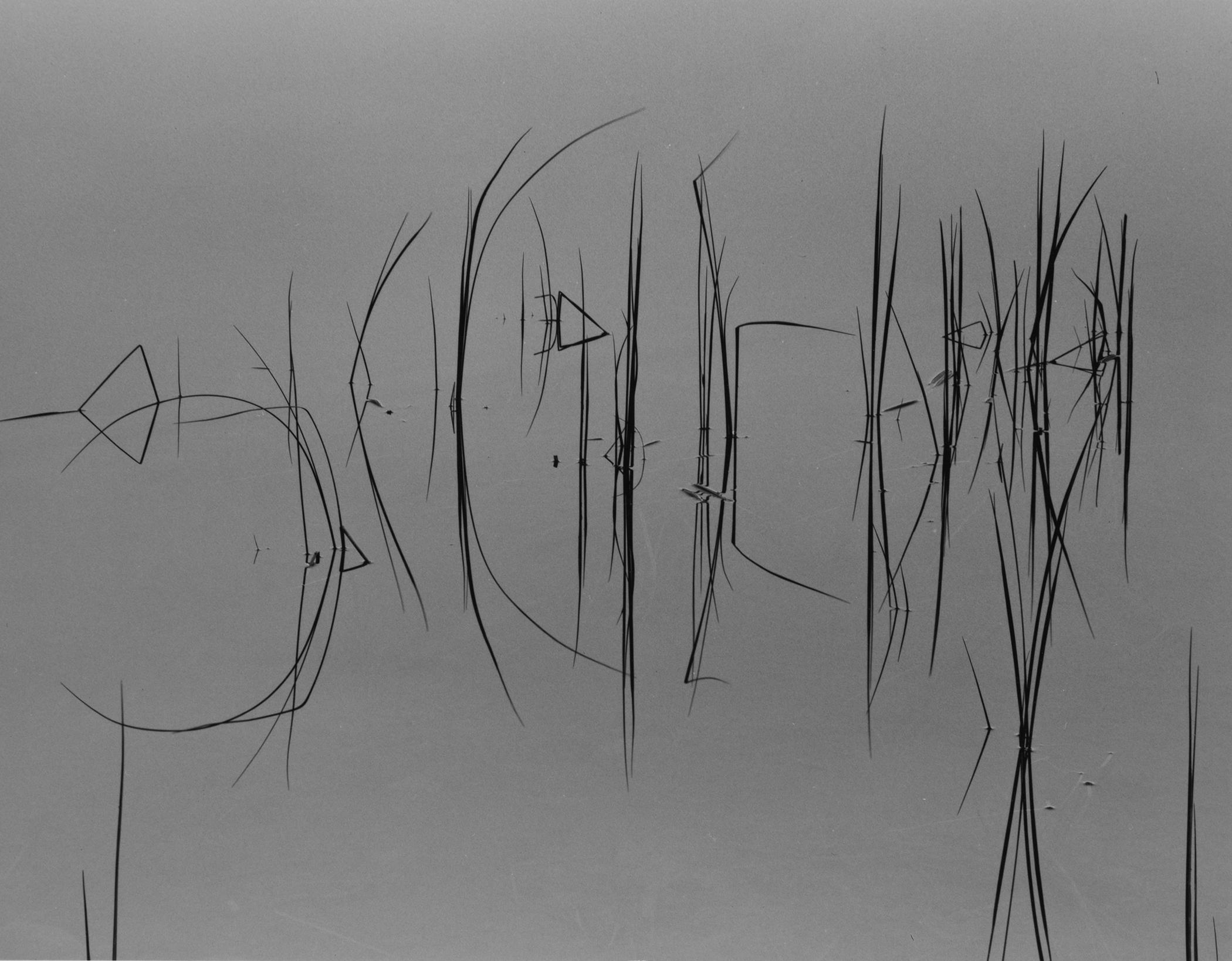 Secret Language, Stanley, ID, 2013.jpg