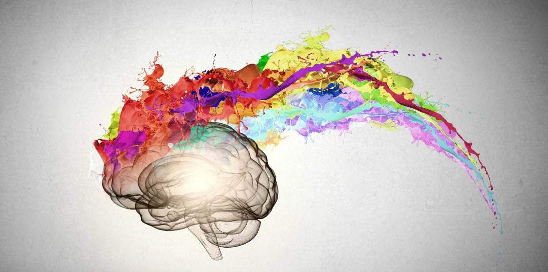 Image result for brain art