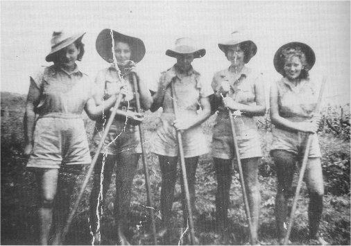Women's Land Army members at Fowlers Farm in the Burdekin district, c. 1942-1945, Image courtesy OzatWar:  http://www.ozatwar.com/ausarmy/wla.htm